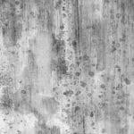 Desinfekční odstranění plísně z fasád Praha 3
