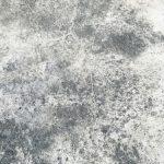čištění fasády od mechu